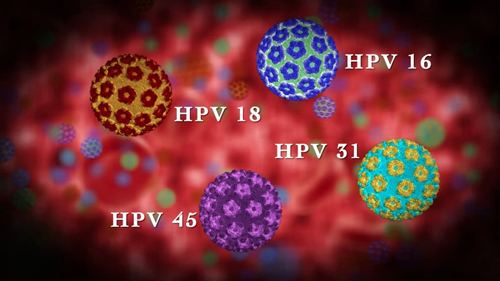 HPV-Infection